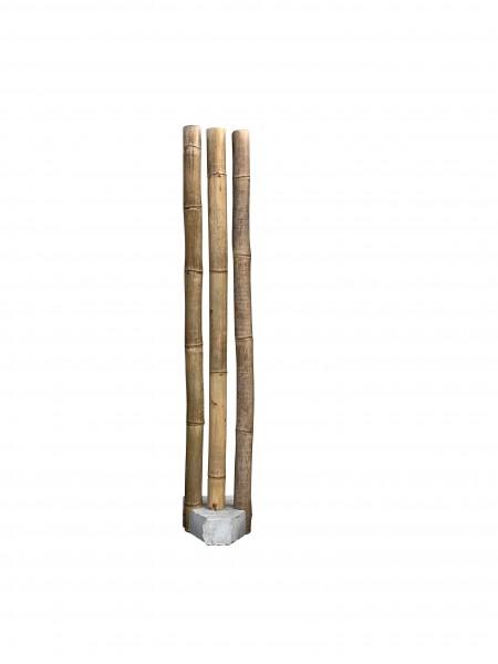 Bambus Palisade